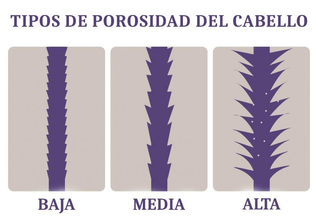 Tipos de porosidad del cabello